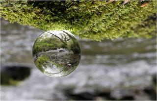River Droplet.jpg