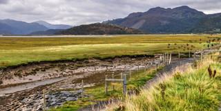 Wetlands & Mountains