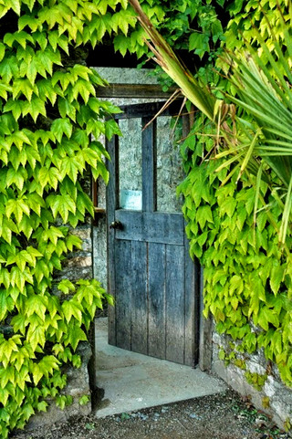 Door at Aberglasney.jpg