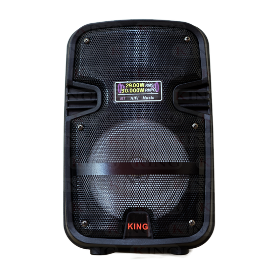 Caja Amplificada Recargable 6 Pulgadas con Micrófono Inalámbrico