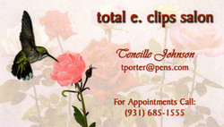 Total E Clips Business Card
