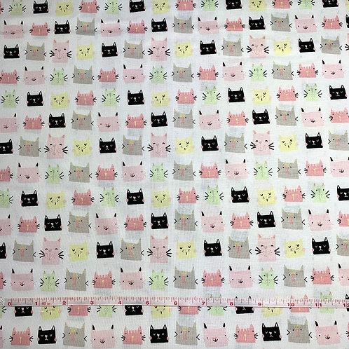 Kitties on White