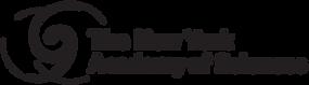 nyas logo large.png