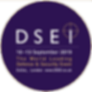 DSEI logo.png