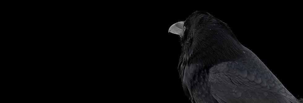 Raven - driving light - Infrared 2.jpg