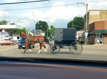 The Amish Have Got Me Thinking...