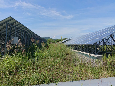 東北太陽光発電所 除草作業