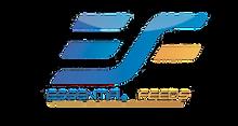 essential_erasec.png