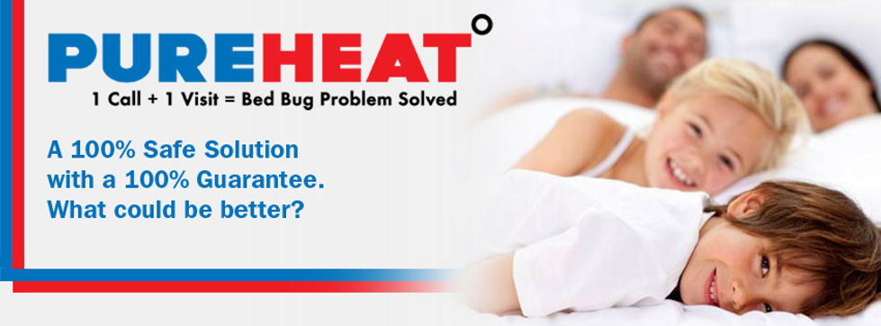 Bed Bug Removal Services