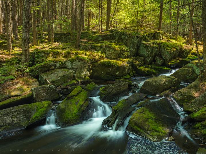 Dappled Light, Crane Pond Outlet, Adirondacks, New York