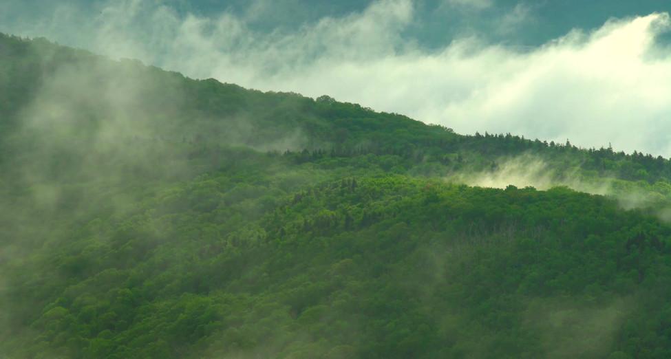 Clearing Storm, Mt Greylock, The Berkshires, Massachusetts