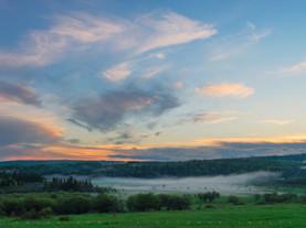 Blanket of Fog, Eugene Moran Wildlife Management Area, Windsor, The Berkshires, Massachusetts