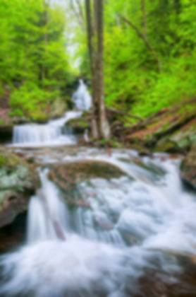 RickettsGlen_0511_DSC2883_4MF-Edit-450px