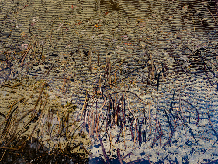 Ripple Sticks, Lake Eaton, Adirondacks, New York