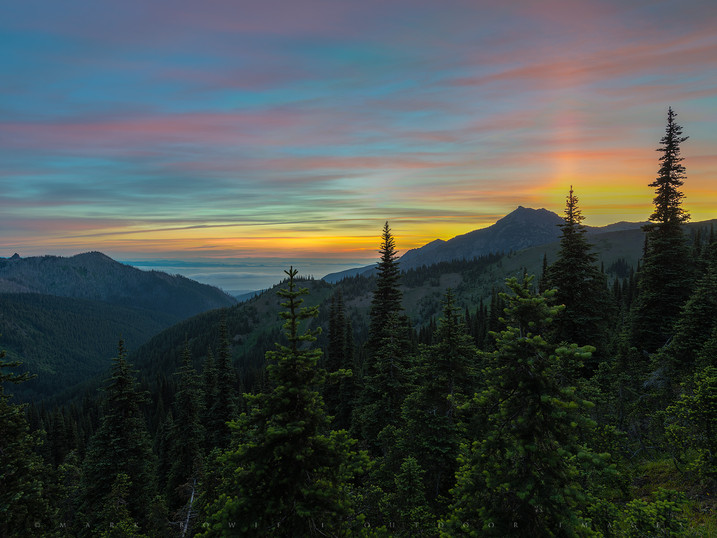 Painter's Palette, Hurricane Ridge, Olympic National Park, Washington