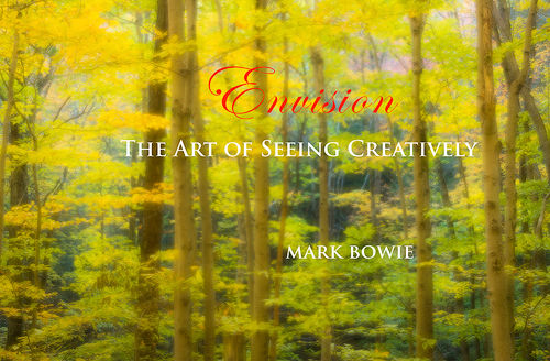Envision-Art-of-Seeing-Presen-Title-Slid