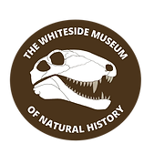 WMNH PNG Sticker copy.png