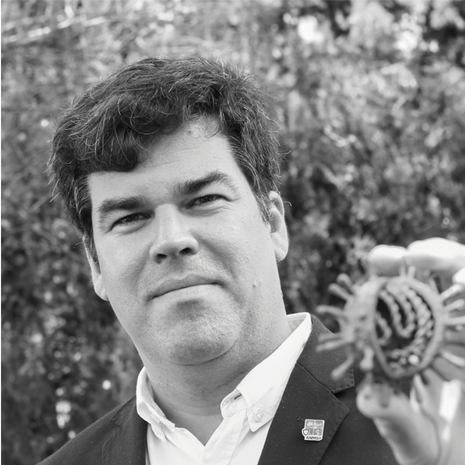 Ricardo Mexia