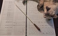 Concert band Score and Cat