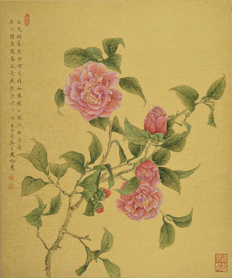YH-07 茶花