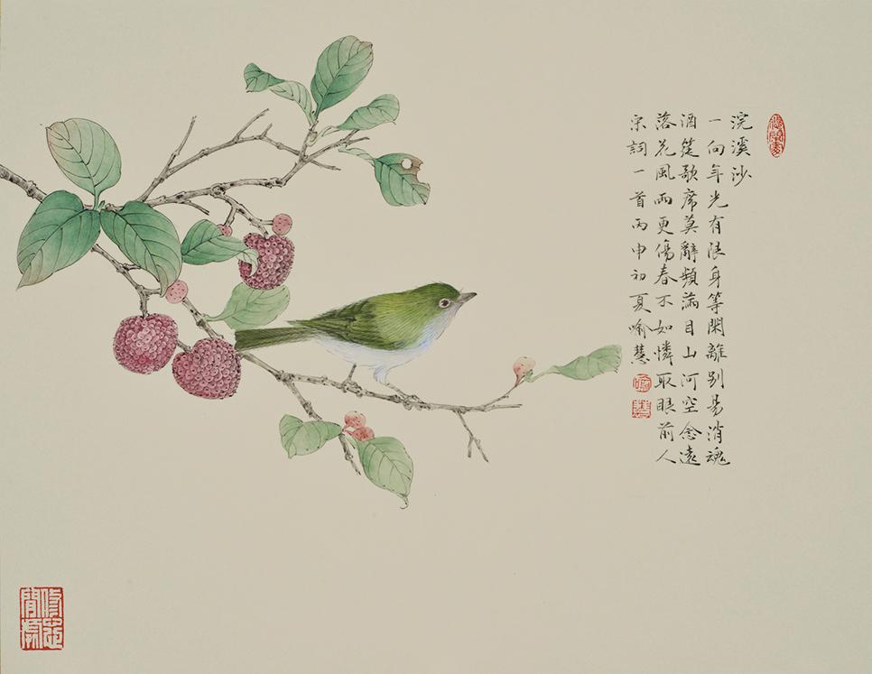YH-29 荔枝小鸟浣溪沙