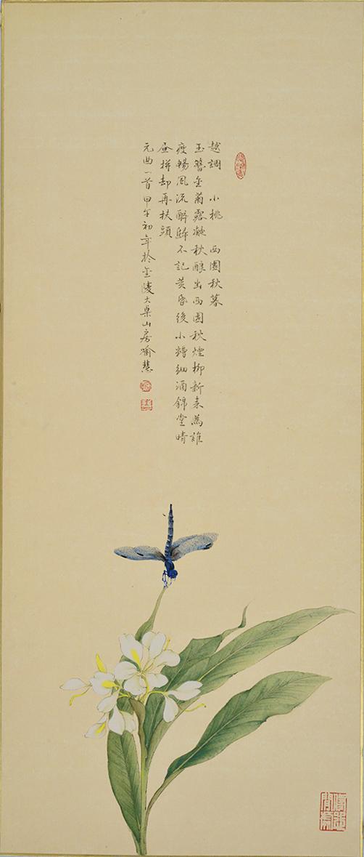 YH-13 蓝蜻蜓