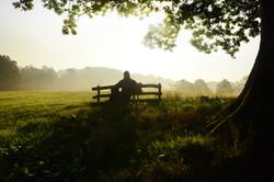 Upper Vobster Farm quiet moment