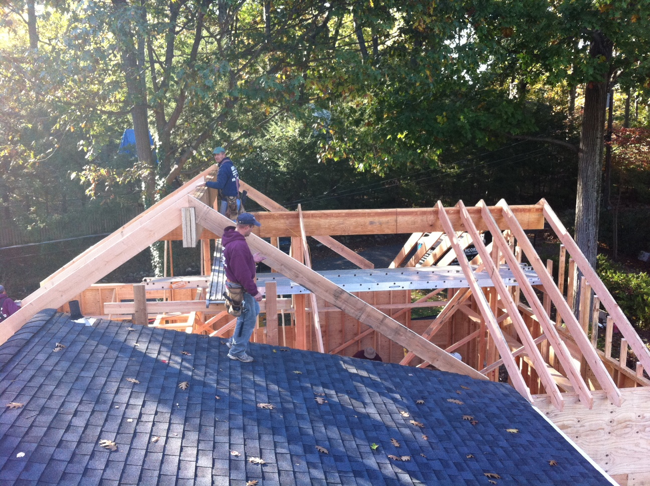 Okeeffe Roof frame 1