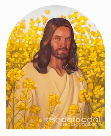 FAITH AS THE MUSTARD SEED, oil on canvas, 16x20, 2015, SOLD