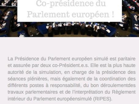 Appel à candidatures de la Co-présidence du Parlement européen