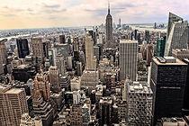landscape, NYC
