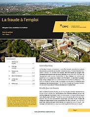 fraudeemploi (2).PNG