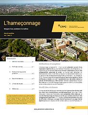 hameconnage.PNG