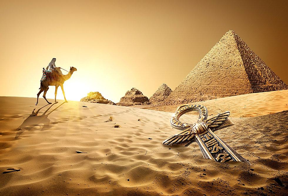 Egypt_Desert_Camels_504228.jpg