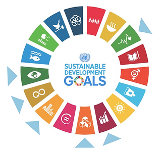 2030 sustainable goals u-earth.png