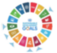 sustainable develpment goals