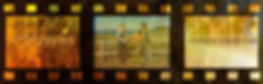 Film-3-2.jpg