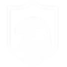 TheDesignHawk-new-logo-white.png