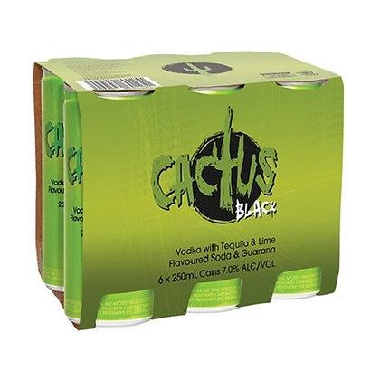 CACTUS BLACK 4X6PK 250ML CANS