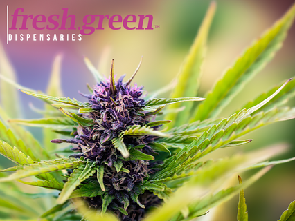 fresh.green: Grape Ape, Purple Punch, Yeti Glue, Peanut Butter Breath, and Lemon Haze in Stock!