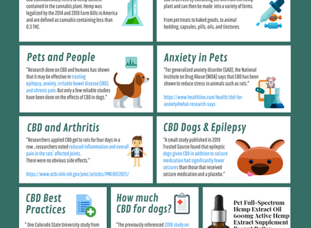 Graphic: CBD for Dogs, Pets and Domesticated Animals Guide