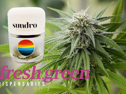 New SUNDRO Flower at fresh.green Dispensaries from Cultivator OG Yields