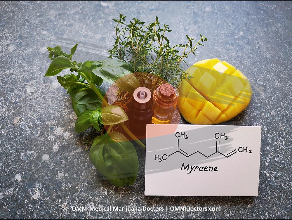 Myrcene - Pain Relief & Sedating Optimal Vape Temp: 332° F