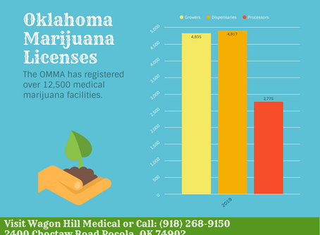 Graphic: Oklahoma Leads the Nation in Rapidly Expanding Medical Marijuana Business Licensing