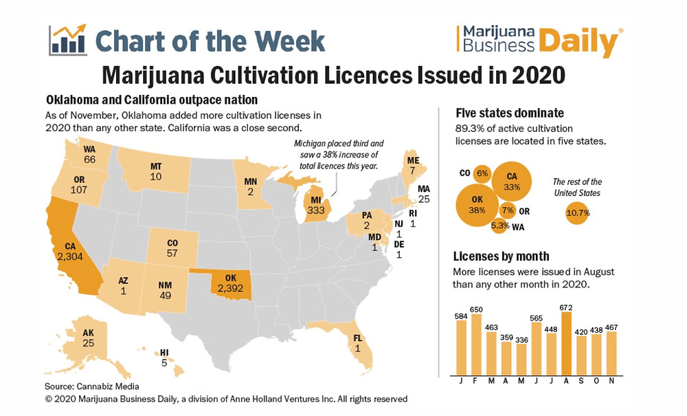 How many marijuana culitvation sites were licensed in 2020?