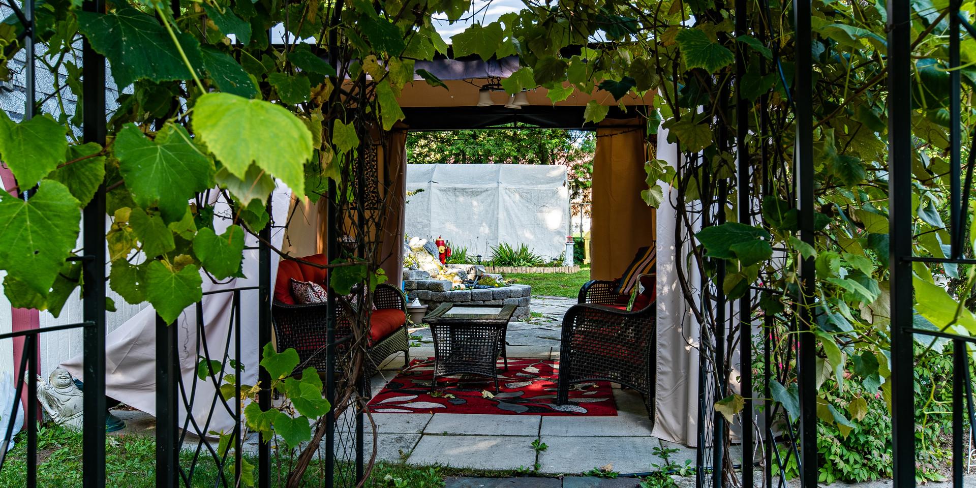 Exterior_Backyard.jpg