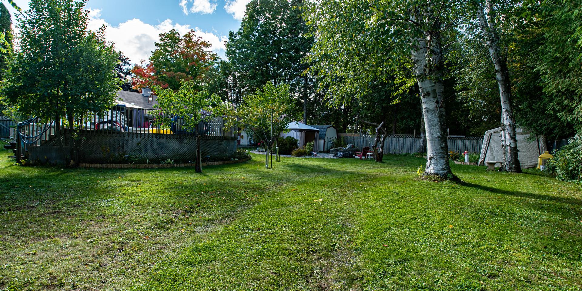 Exterior_Backyard4.jpg