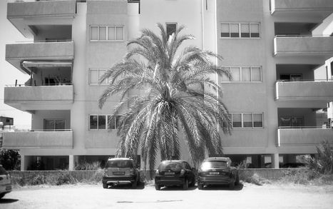 Limassol, 2019