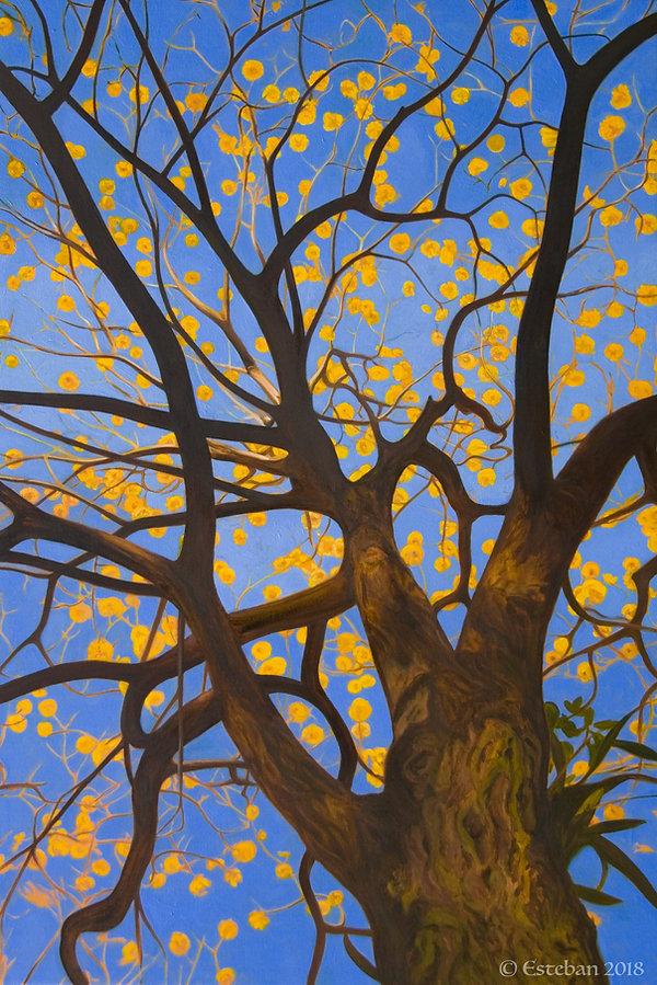 Tree of Gold.jpg