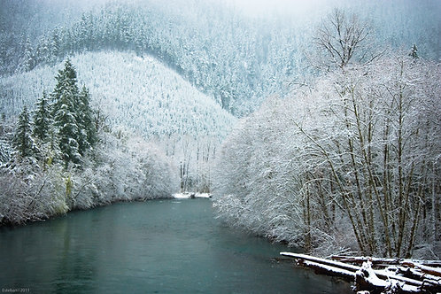 McKenzie River Snow~ Metal Print Photograph  16 x 22""